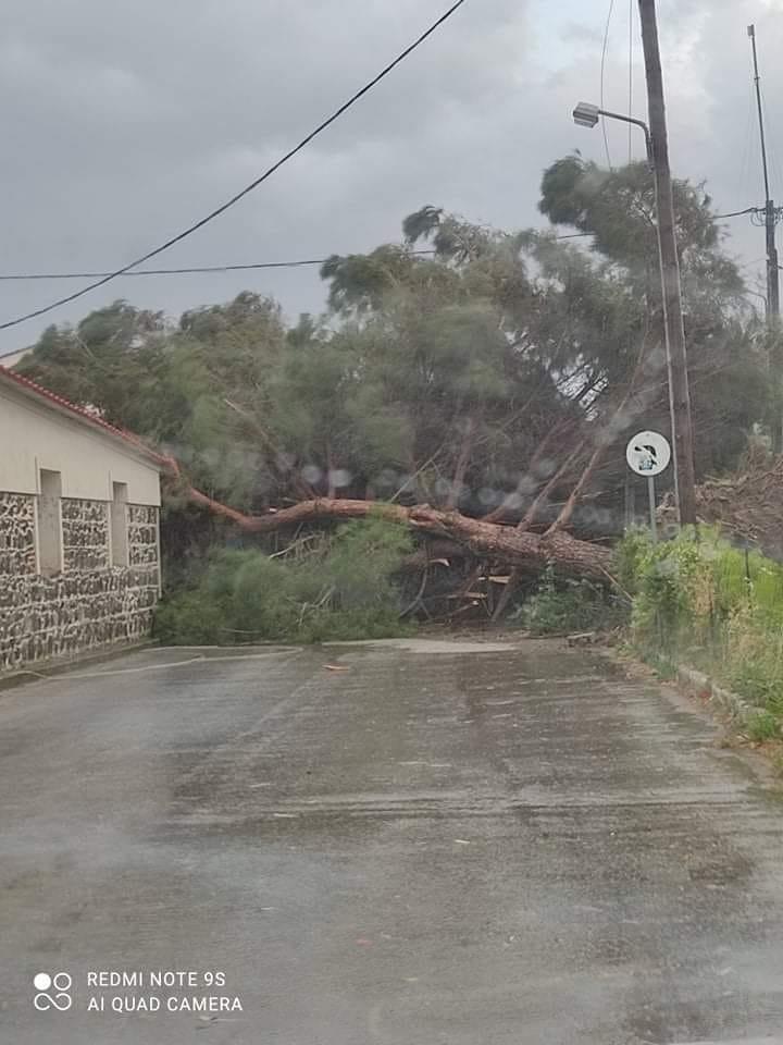 Μεγαλές καταστροφές από τους ισχυρούς ανέμους στο νησί της Λέσβου.