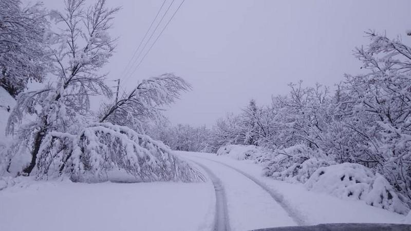 Δυναμική παρουσία του χειμώνα από τα μέσα της επόμενης βδομάδας στη χώρα μας.
