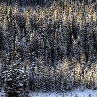 Ισχυρός παγετός και ασθενή κατά βάση φαινόμενα την Κυριακή
